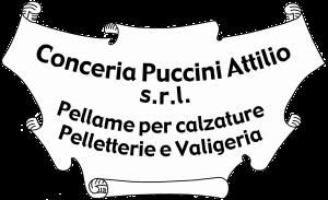 Logo-puccini-attilio