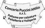 Conceria Puccini